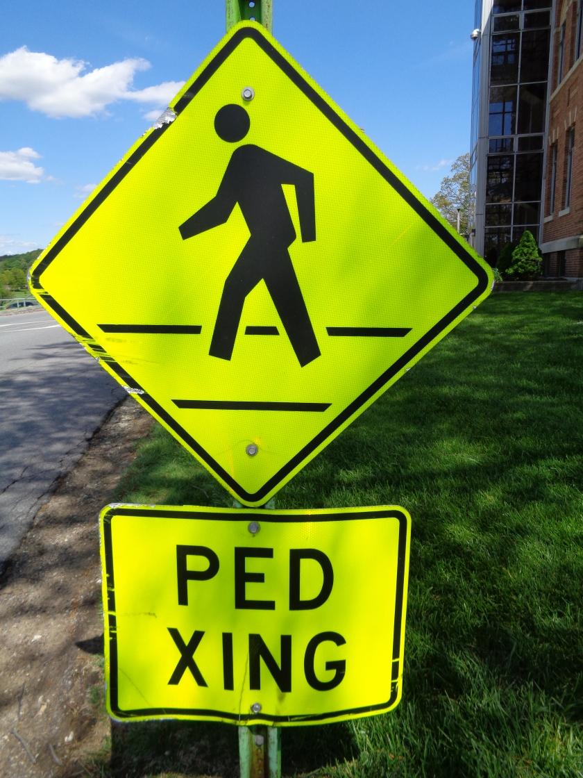 PedXing#001